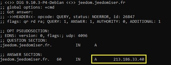 Si la résolution DNS fonctionne pour un sous-domaine avec la commande dig