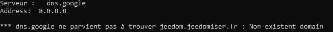 Si la résolution DNS ne fonctionne pas pour un sous-domaine avec la commande nslookup