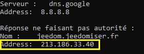 Si la résolution DNS fonctionne pour un sous-domaine avec la commande nslookup